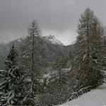Toria di Viozene – Alta Valle del Tanaro