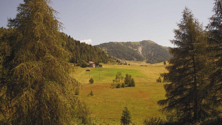 Trivigno e Monte Padrio